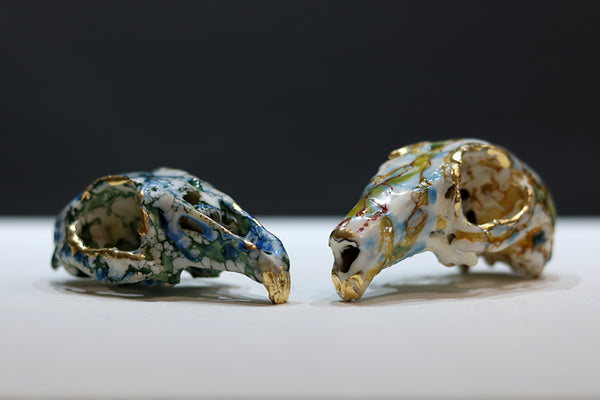 Decorated Animal Skulls by Hazel Godfrey