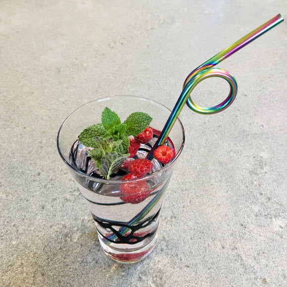Fancy Stainless Steel Straws - Sample