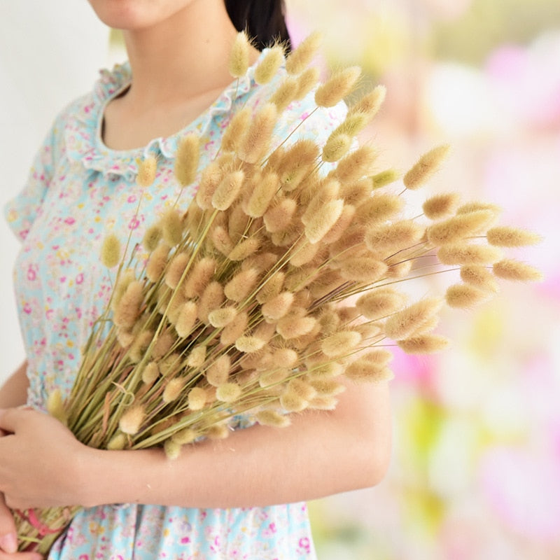 30Pcs/Lot Natural Dried Flowers Rabbit Tail Grass Bunch Colorful Lagurus Ovatus Real Flower Bouquet For Diy Home Wedding Decor