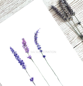"Floral Art Print ""Lavender Love"" - tinkl ILLUSTRATION"