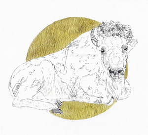 "Original Artwork ""Bison Queen"" in Aid of Lighthouse Farm Sanctuary - tinkl ILLUSTRATION"