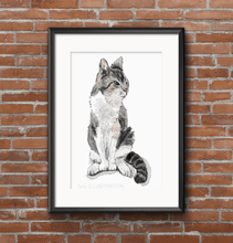 Load image into Gallery viewer, Watercolour Cat Portrait - tinkl ILLUSTRATION