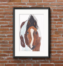 Load image into Gallery viewer, Watercolour Horse Portrait - tinkl ILLUSTRATION