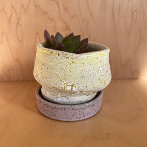 Colorful Crackle Glaze Planter