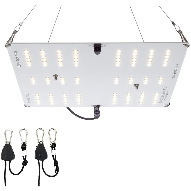 Horticulture Lighting Group HLG65-V2-4K Quantum Board LED Grow Light, 1 Pack