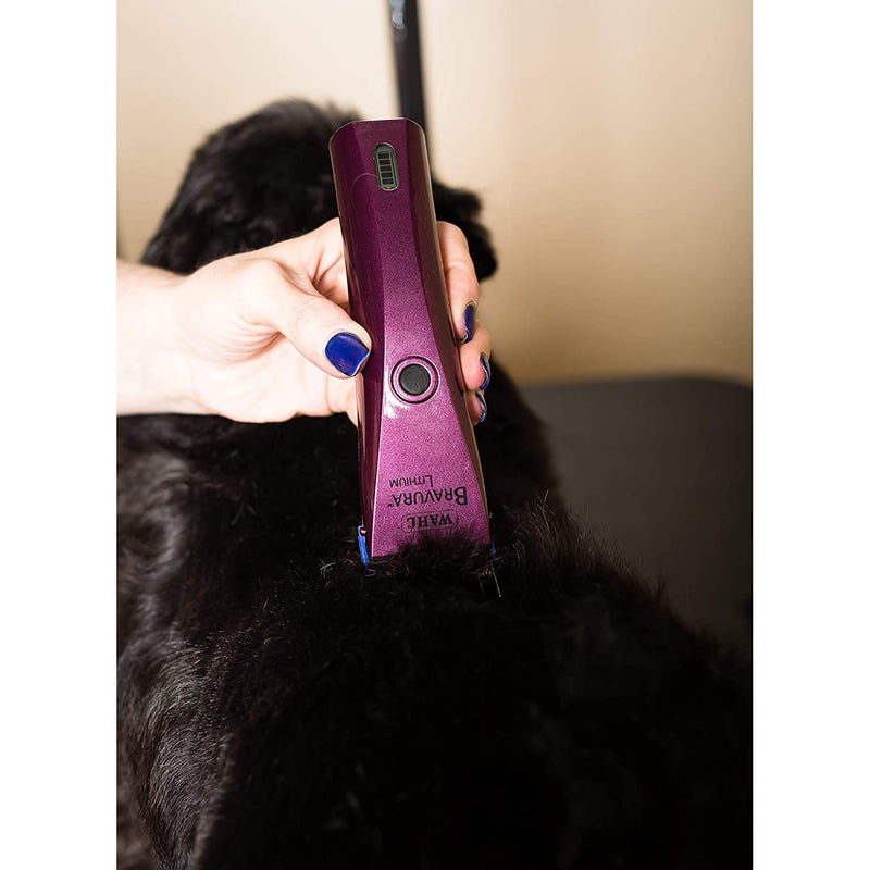Wahl Professional Animal Bravura Pet, Dog, Cat, and Horse Corded/Cordless Clipper Kit