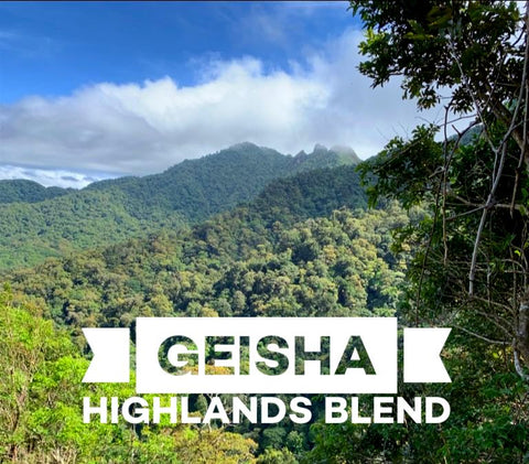 Geisha Highlands Blend - 12oz WHOLE BEAN