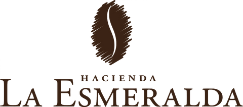 Panama Geisha - Esmeralda Special Jaramillo Washed 4oz WHOLE BEAN