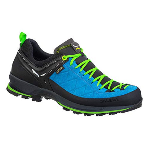 Salewa Men's Mountain Trainer 2 GTX Shoes