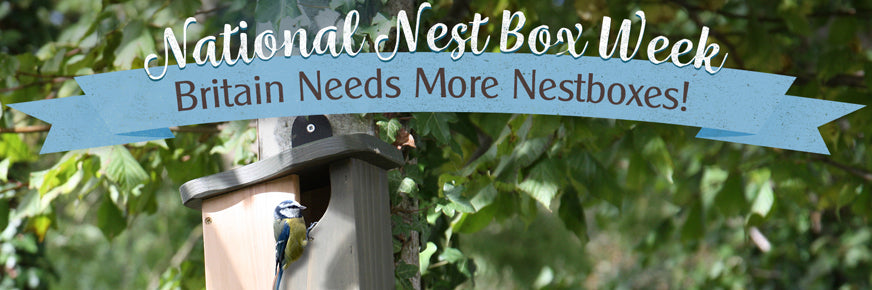 National Nest Box Week 2021