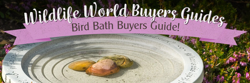 Bird Bath Buyers Guide