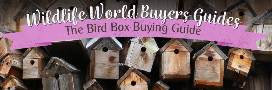 The Bird Box Buyers Guide