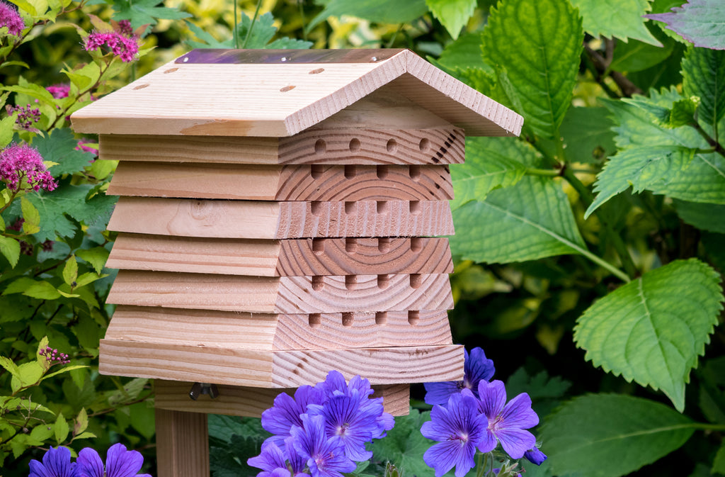 Solitary Bee Hives