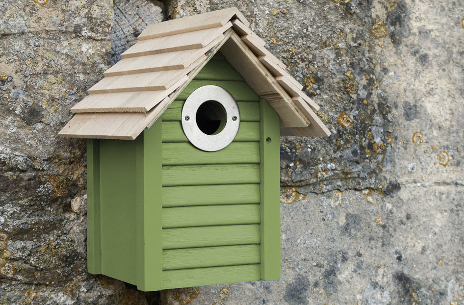 Buy Bird Boxes Online