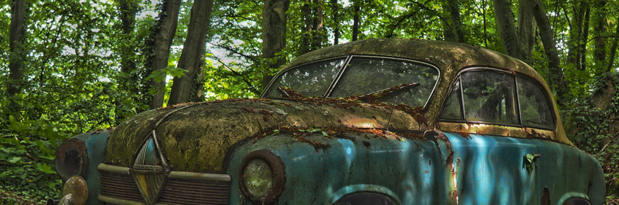 Old car rusting in trees
