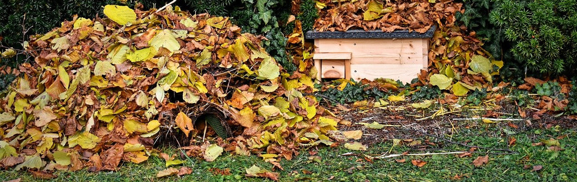 Hedgehog Shelter