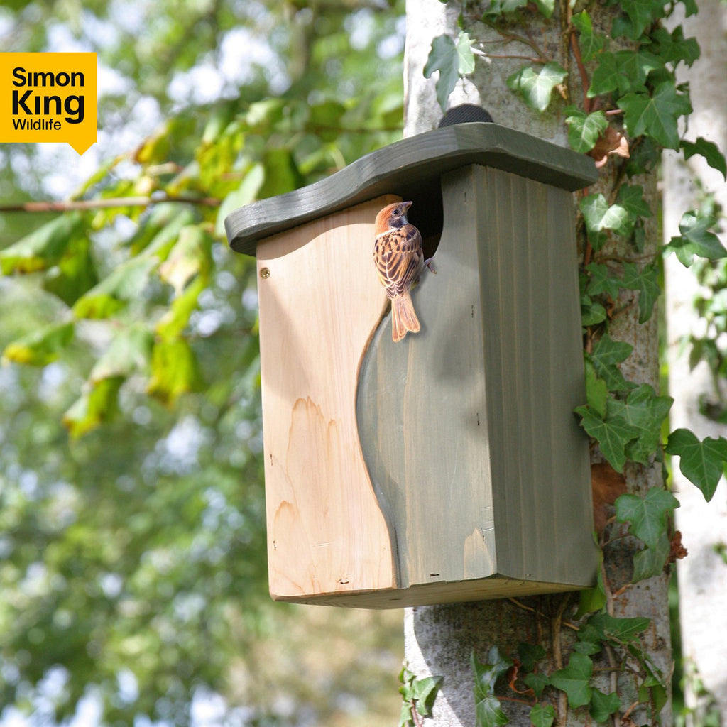 Curve, Cavity Bird Nest Box