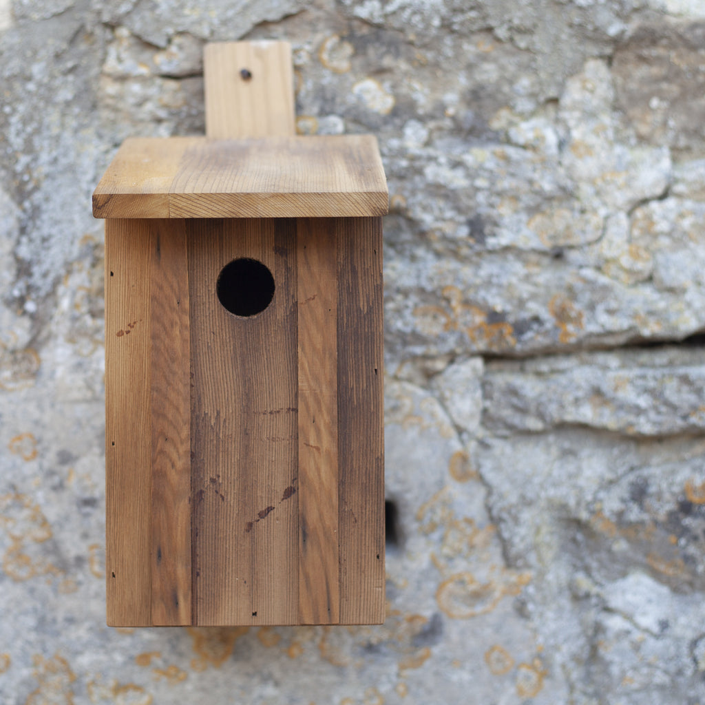 Eco Bird Nest Box