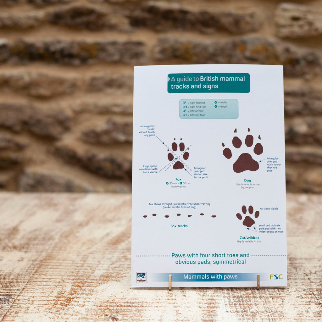 Field Guide Mammal Tracks and Signs