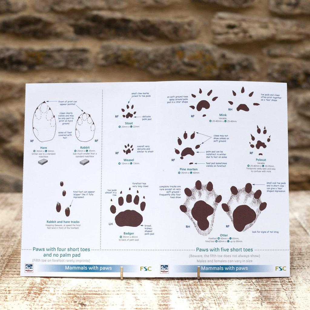 Buy Mammal Tracks and Signs Field Guide online