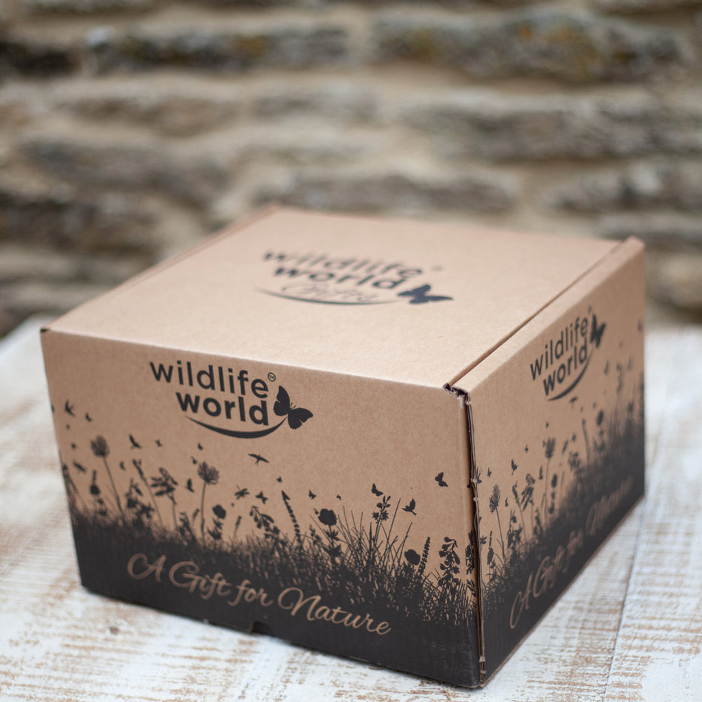 Wildlife World Gift Box