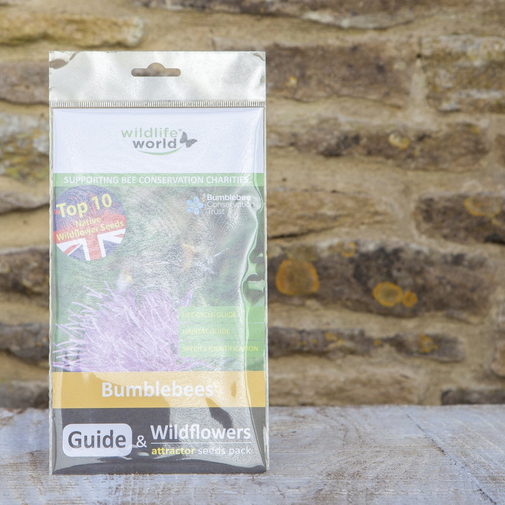 Wildlife World Bumblebees Guide with Wildflower Seeds