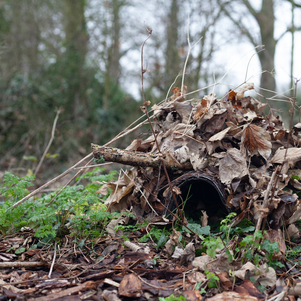 Hedgehog Shelter with cover