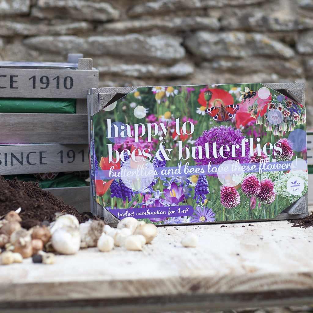 Happy to Bees and Butterflies Bulbs