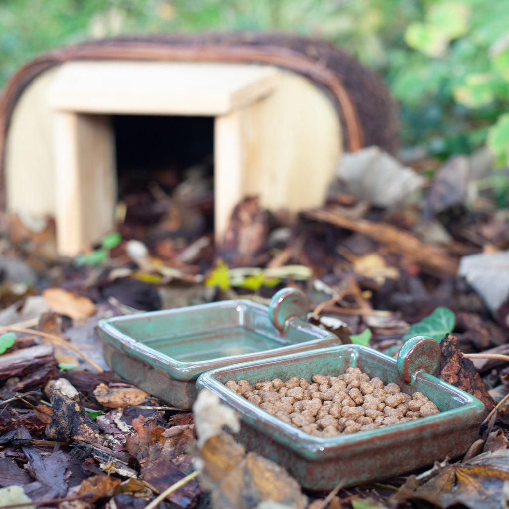 Wildlife World Hedgehog Snack Bowl