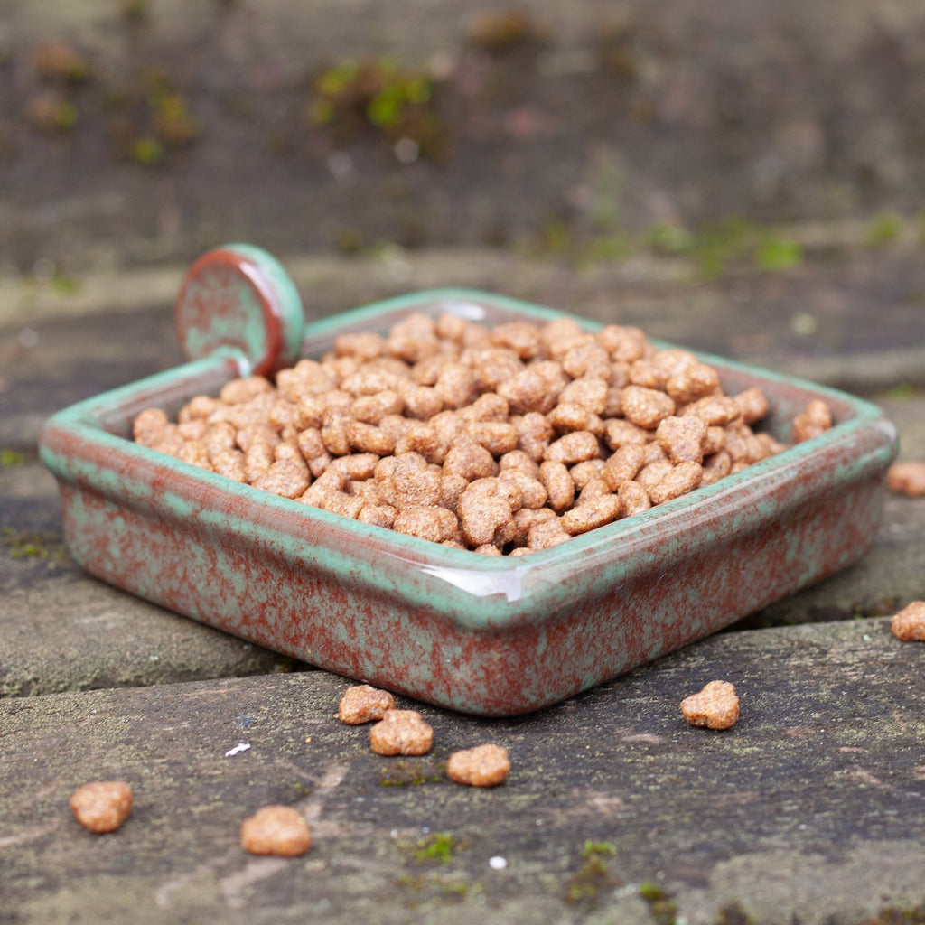 Hedgehog food in Hedgehog Snack Bowl