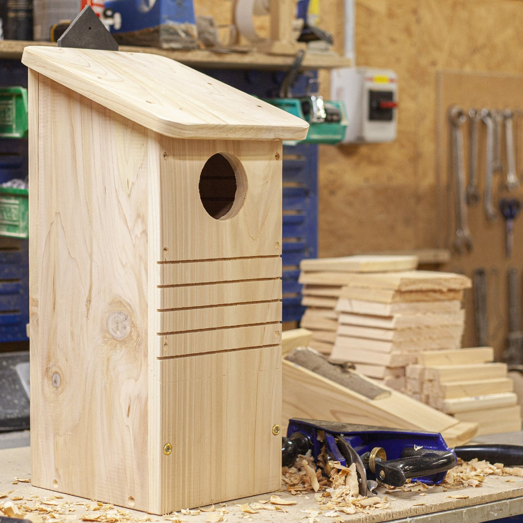 Wildlife World workshop - Red Squirrel box