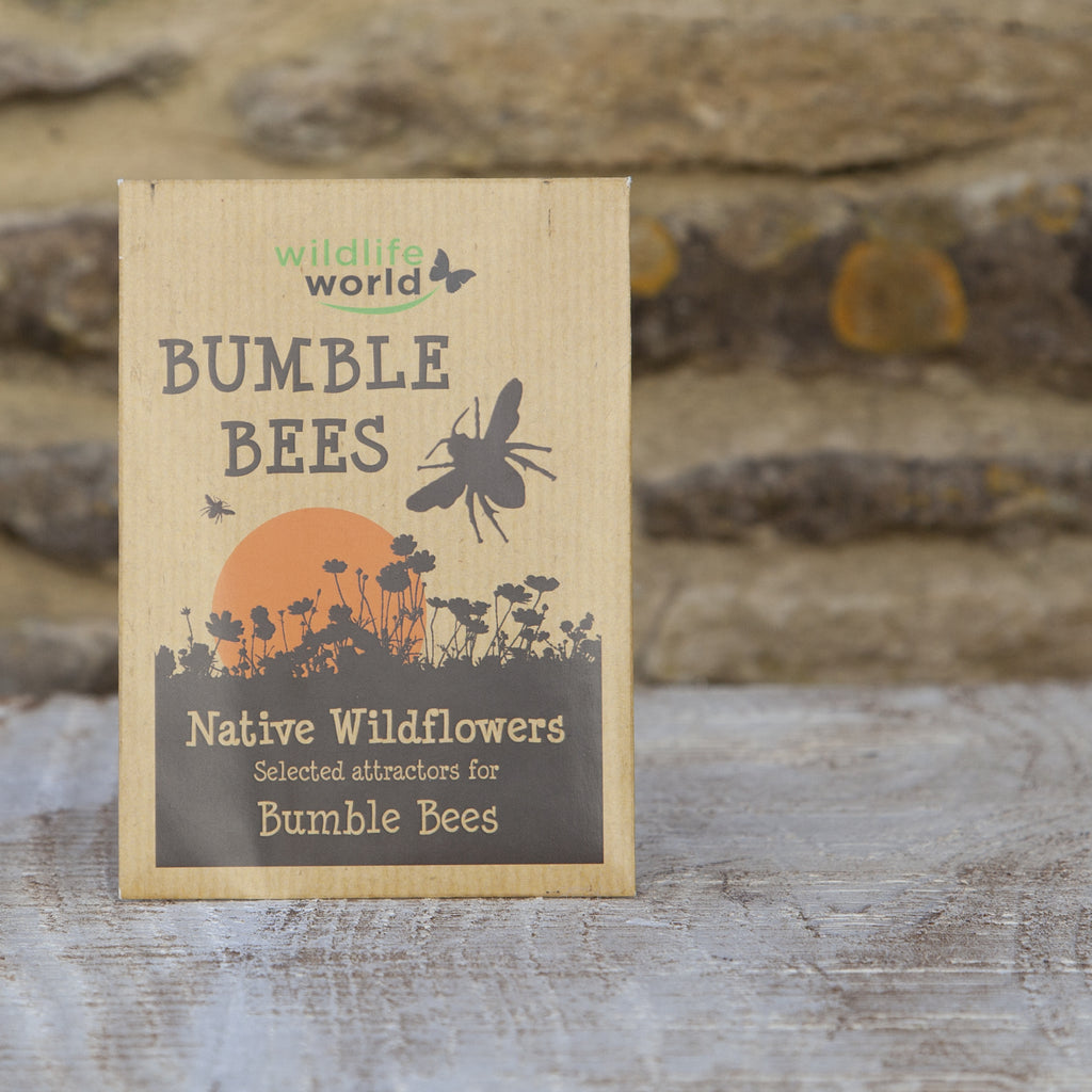 Native Wildflower Seeds for Bumblebees at Wildlife World