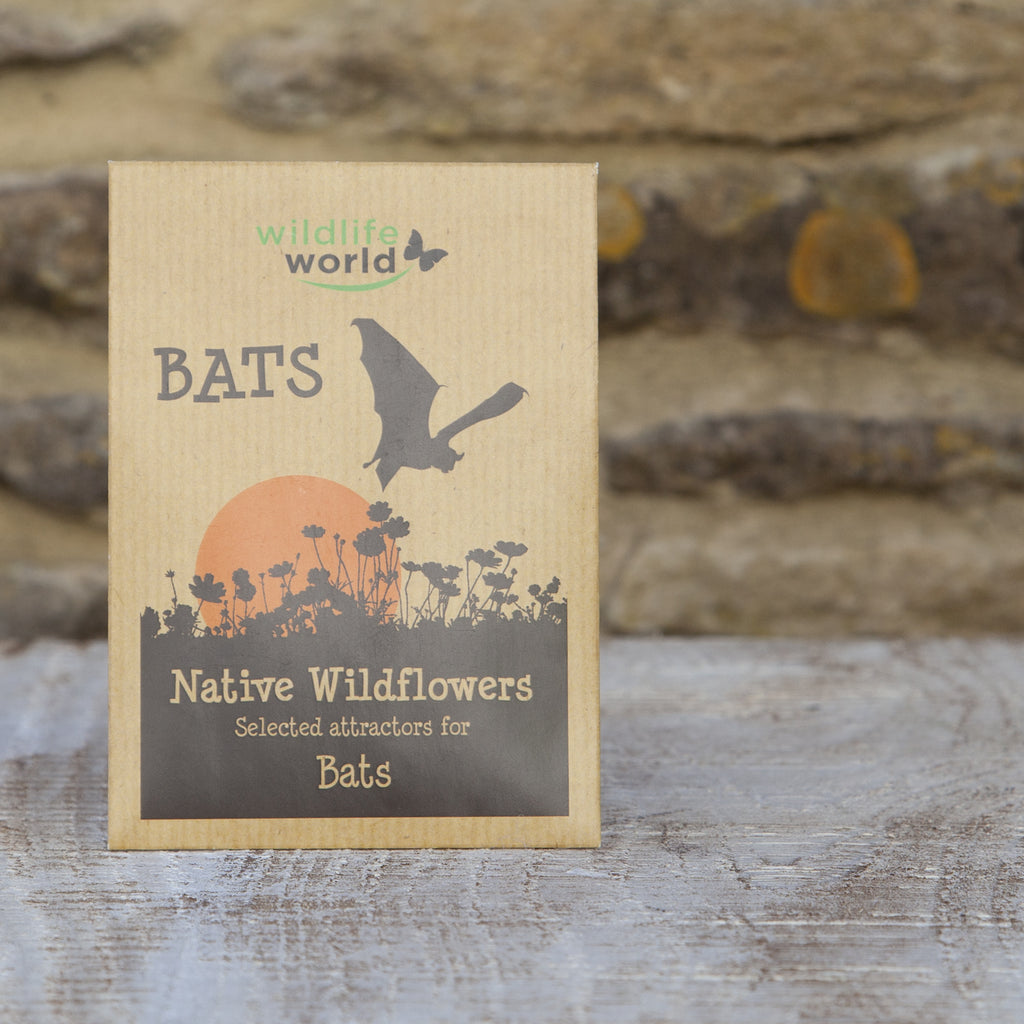 Native Wildflower Seeds for Bats at Wildlife World