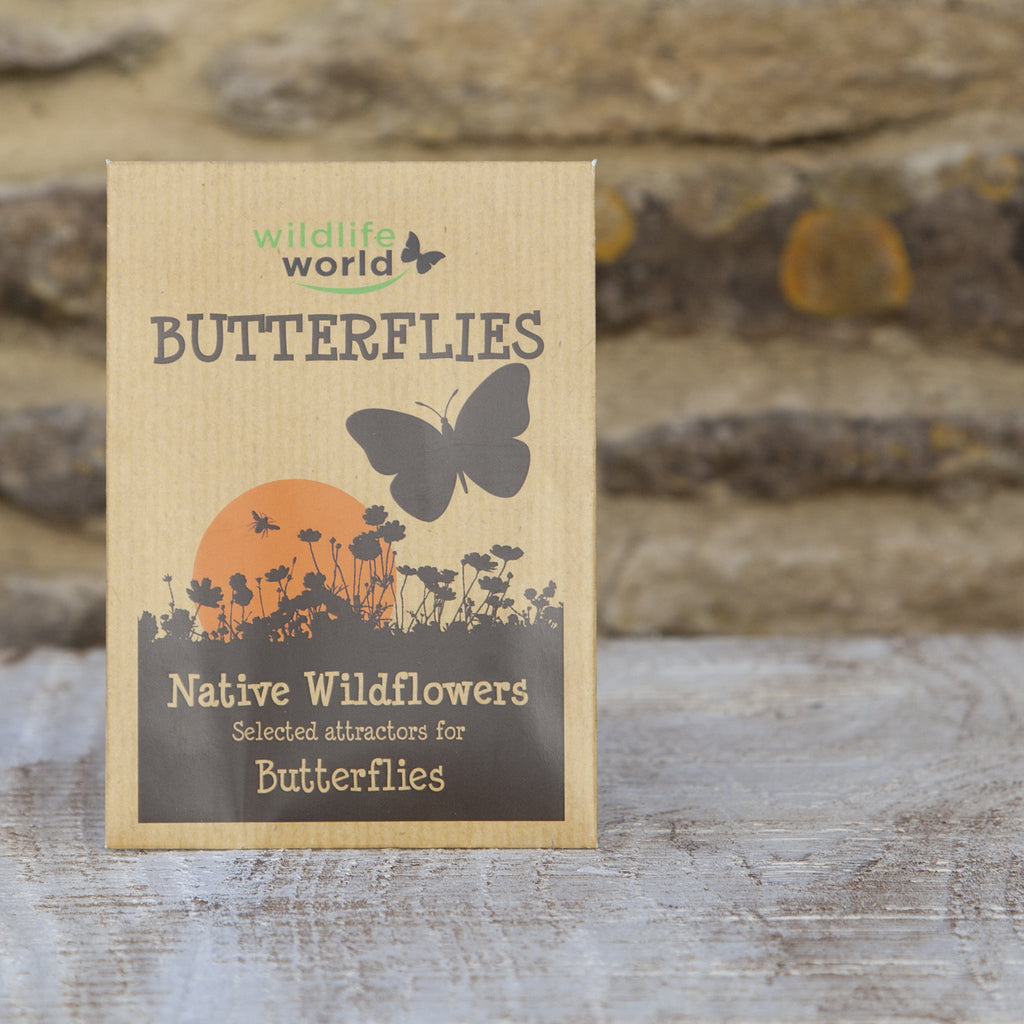 Native Wildflower for Butterflies at Wildlife World