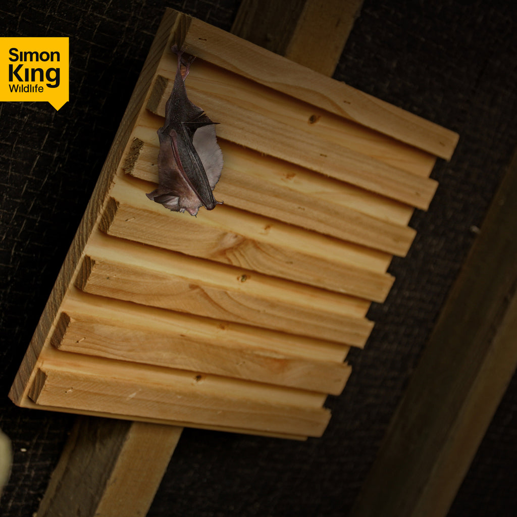 Simon King Bat Rack