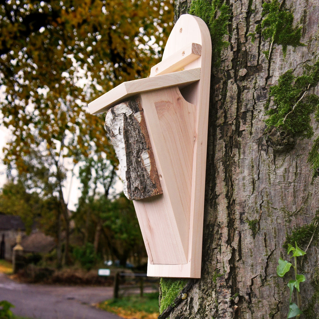 Tree Creeper Bird Box
