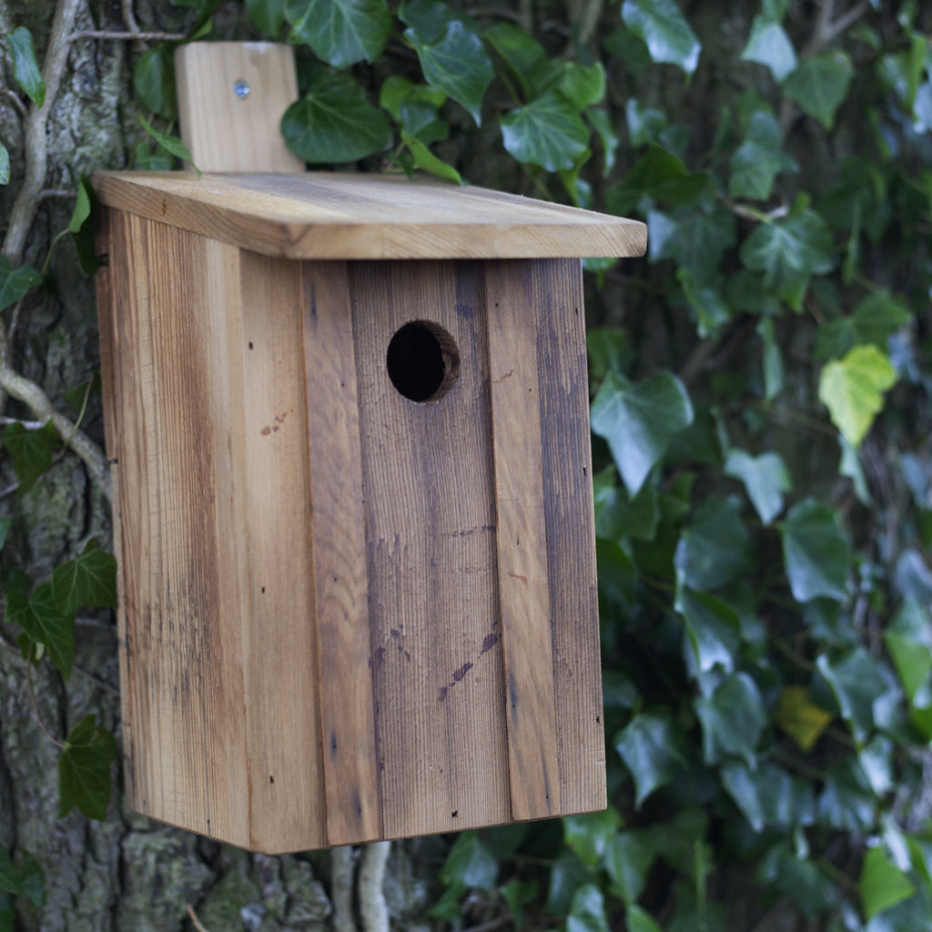 Wildlife World Bird Nest Box