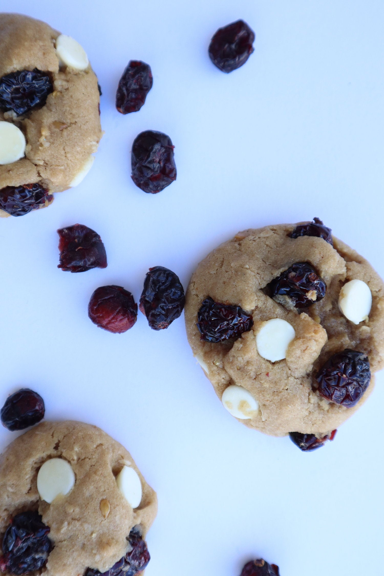 Oatmeal Cranberry White Chocolate Chip Mix