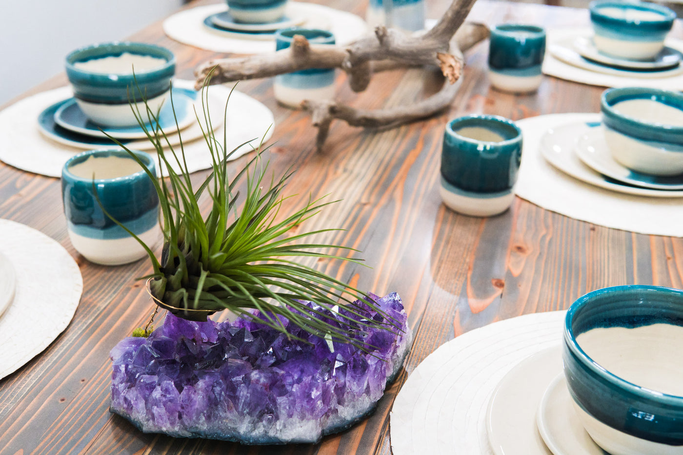Decorating With Crystals + Air Plants - Lucky Air Plant by ...