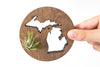 Michigan State Wooden Cut Out Magnet  + Air Plant