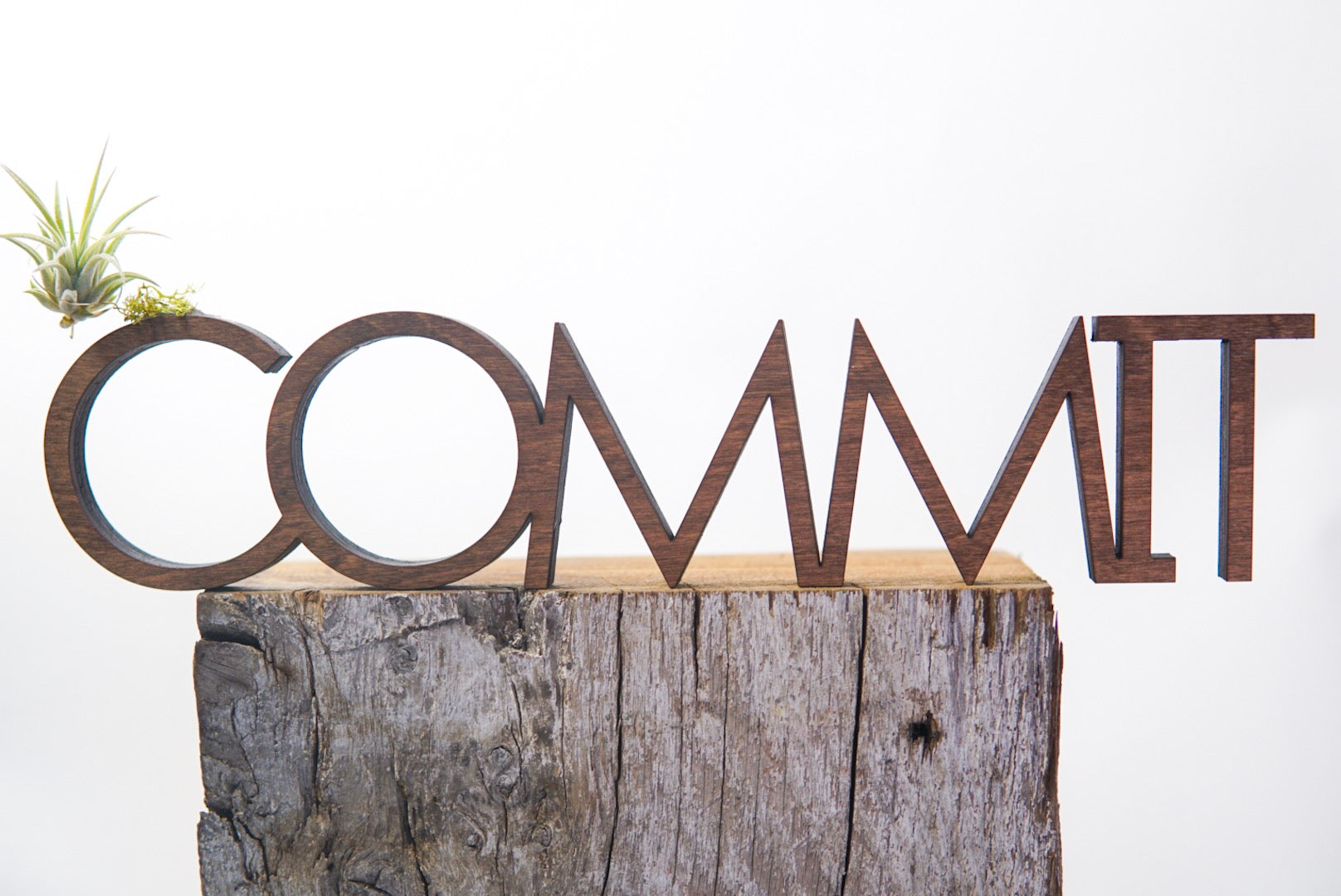 Commit Wood + Word + Air Plant