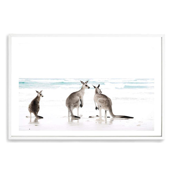 Kangaroo's On The Beach Art Print No.1