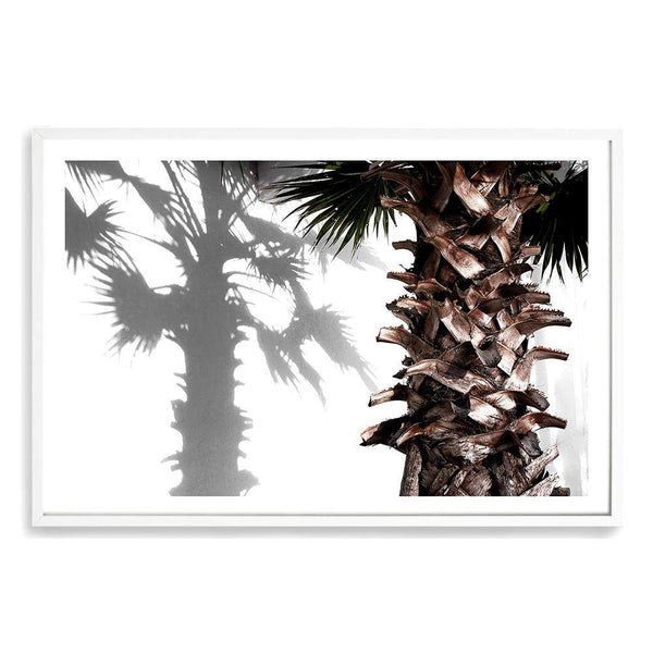 Shaded Palm Art Print No.1