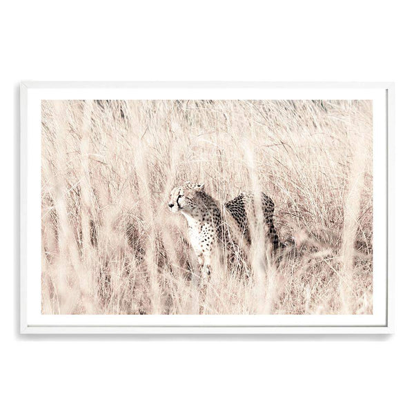 Cheetah In The Grass Art Print No.1