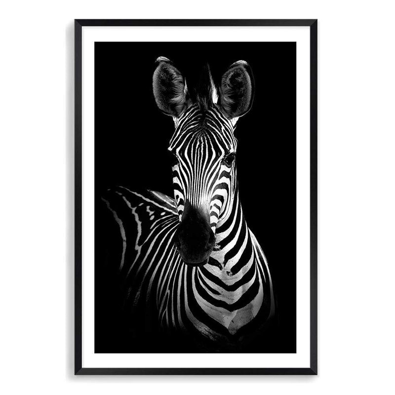 Zebra Photographic Wall Art Print or Poster By The Paper Tree.