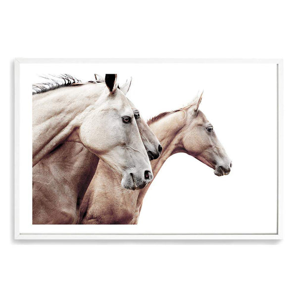 Palomino Horses Photographic Wall Art Print or Poster By The Paper Tree.