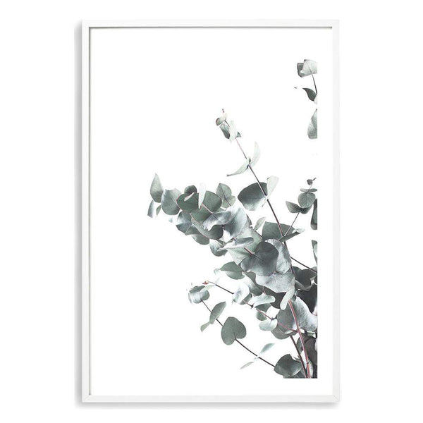 Eucalyptus Leaves II Photographic Wall Art Print or Poster By The Paper Tree.