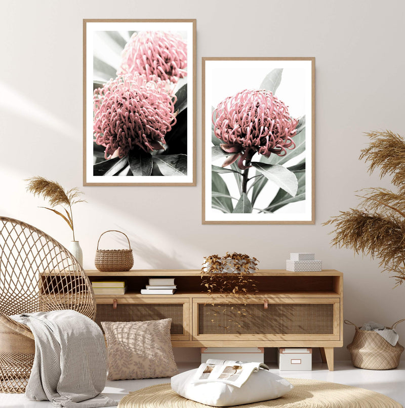 Featuring A Waratah Flower Wall Art Print, Designed and Made in Australia, This Floral Print Is Available As A Poster Print, Framed Print Or Canvas Print.