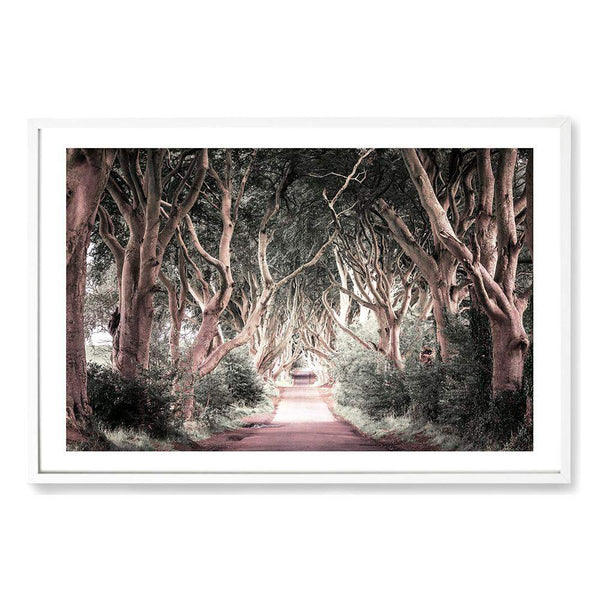 Through The Trees Photographic Wall Art Print or Poster By The Paper Tree.