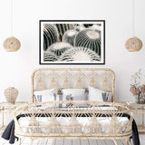 Golden Barrel Cactus Art Print No.1